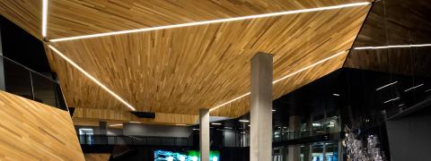 2013 Award for best Suspended Ceiling